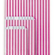 5-x-7-light-blue-striped-paper-counter-bags.5a8c5d3f49481